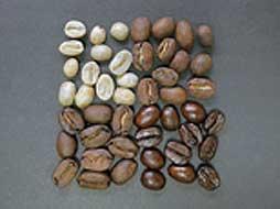 Kaffeebohnen-mit-verschiedenen-Röstgraden